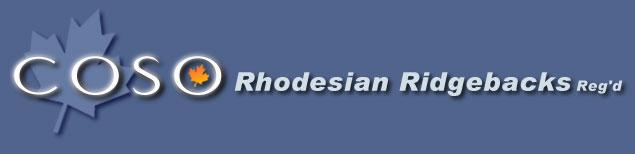 COSO Rhodesian Ridgebacks Reg